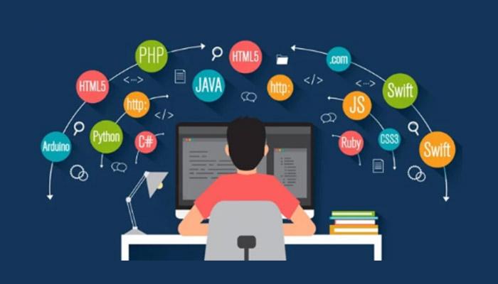 Lập trình viên là lựa chọn đầu tiên của các sinh viên IT