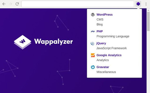 Frontend Developer Extension Wappalyzer