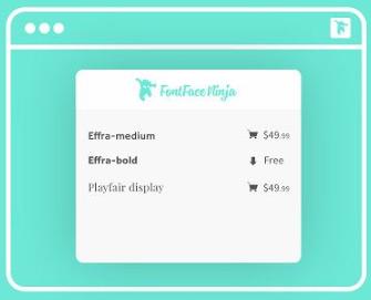 Frontend Developer Extension FontFace Ninja
