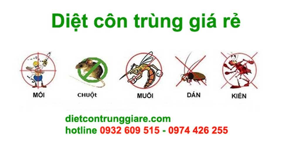 Green House Pest Control- Diệt côn trùng giá rẻ