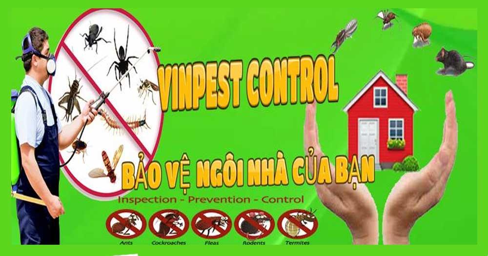 VinPest Group- Diệt côn trùng: Muỗi, gián, chuột, kiến