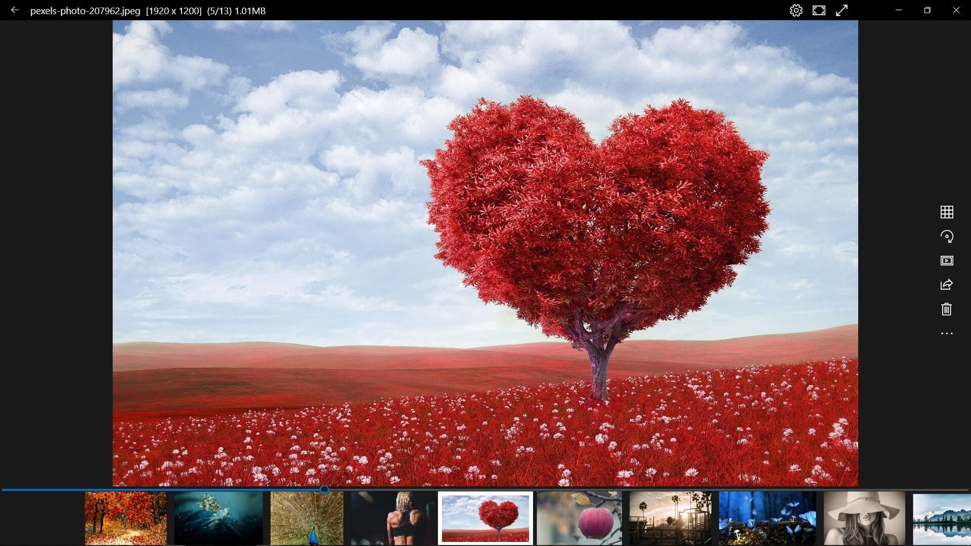 Phần mềm quản lý ảnh 123 Photo Viewer